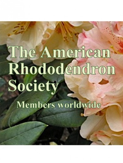 American Rhododendron Society